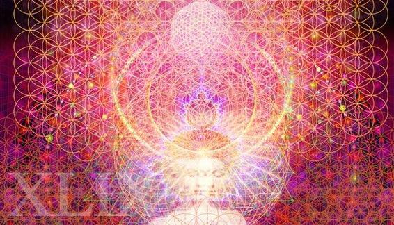 Mind Meld 49 | Hive-Minded Future Gods with Master Shaman, Hamilton Souther