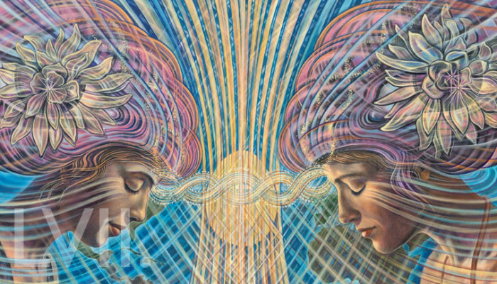 Mind Meld 57 | Interconnected Separateness with Amanda Sage
